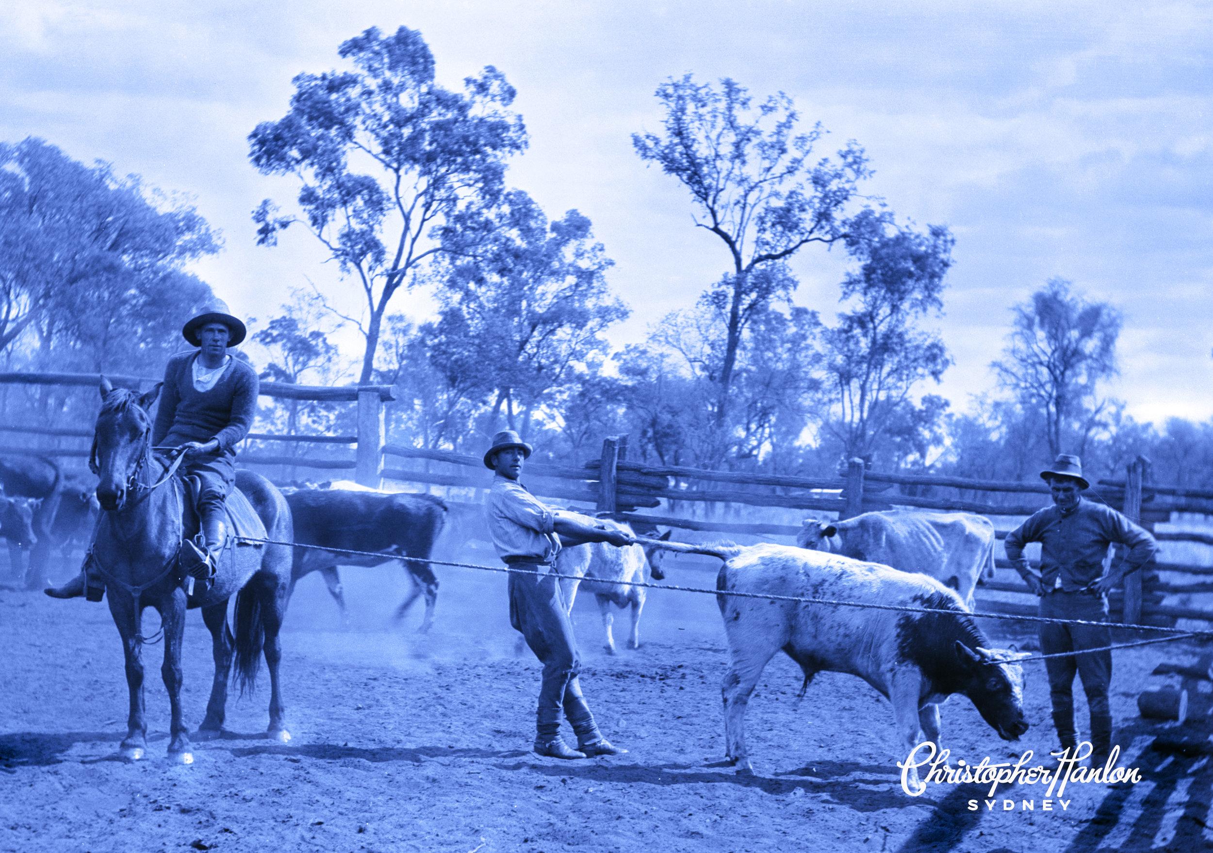 HANLON® Farm GOOMALIBEE AUSTRALIA CIRCA 1875