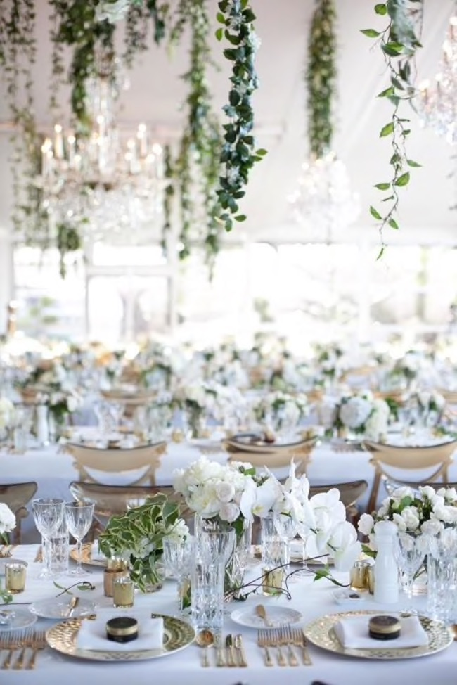 A photo from Cassandra's wedding
