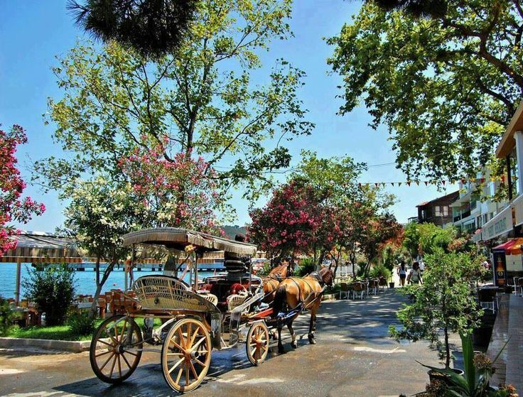 The Prince Islands, Istanbul