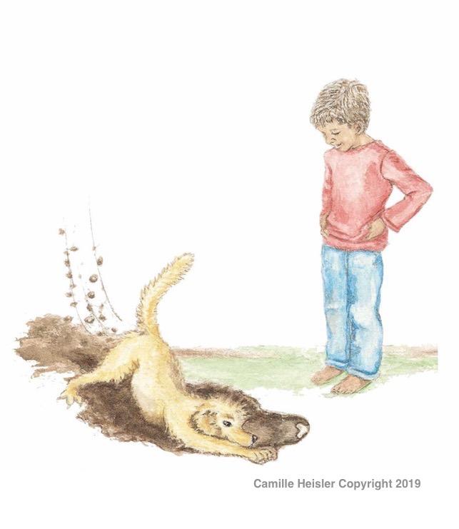 "Illustration from ""Exploring Soils: A Hidden World Underground"" Children's Book"