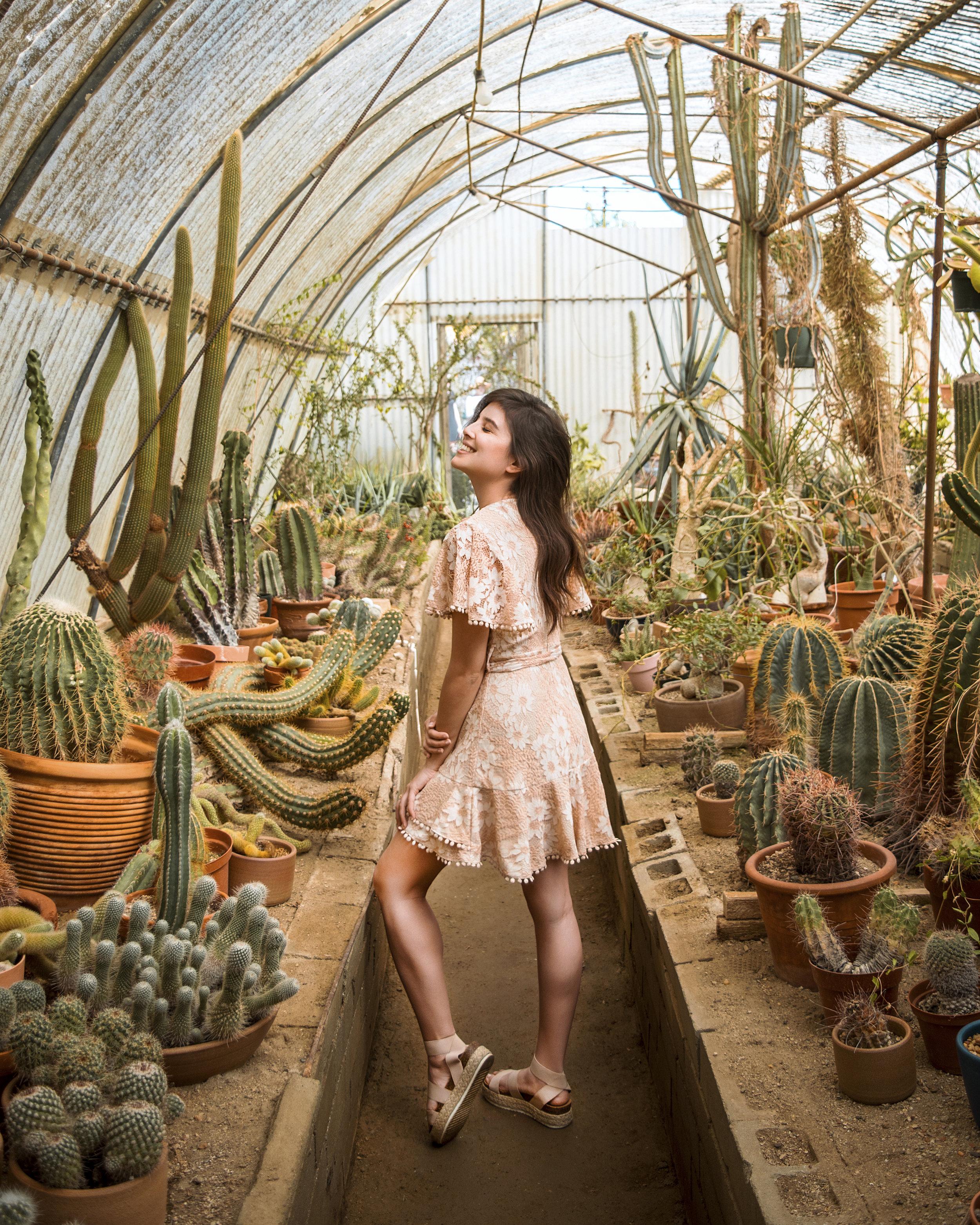 Moorten Botanical Garden With Chelle