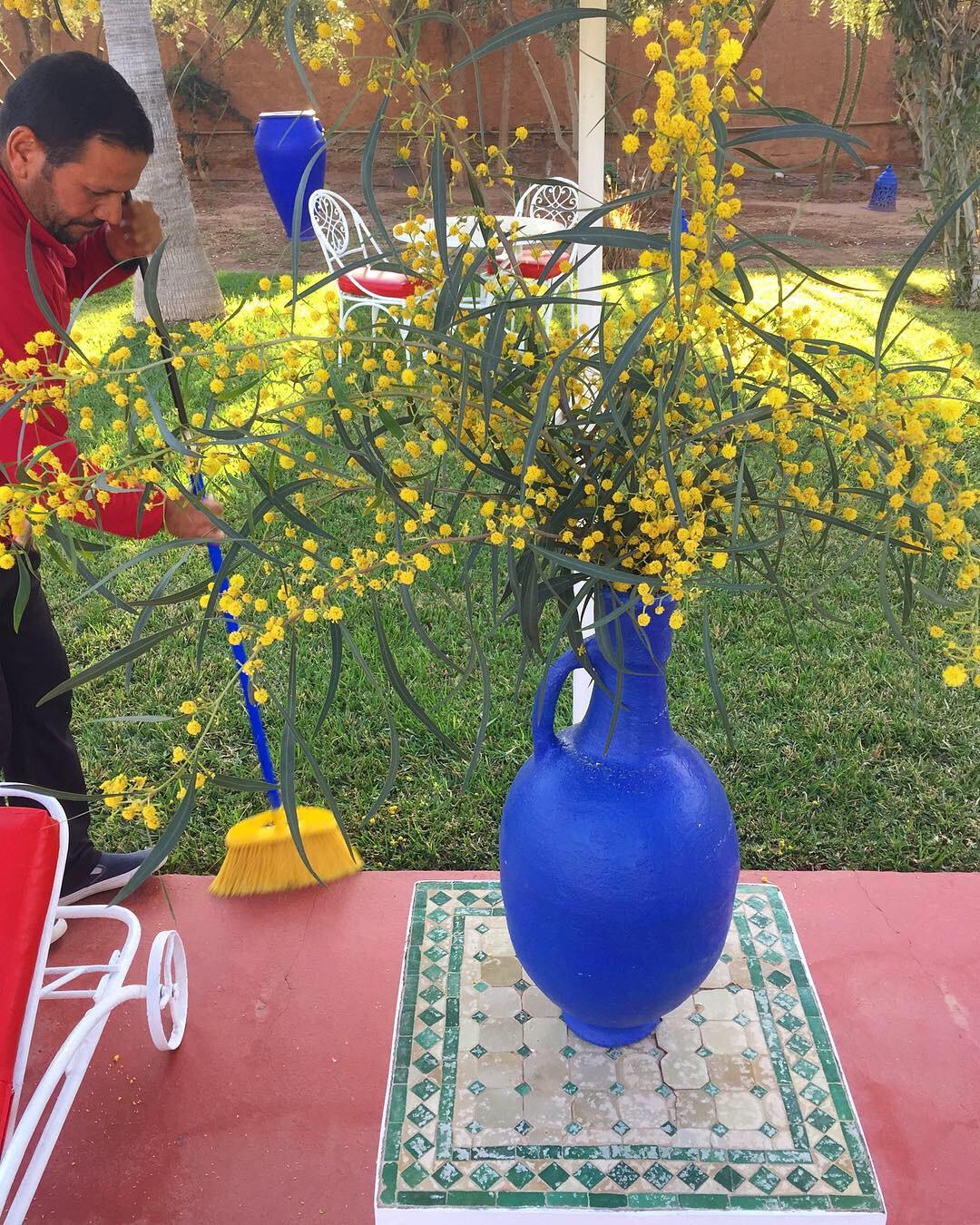Gardener Mohamed