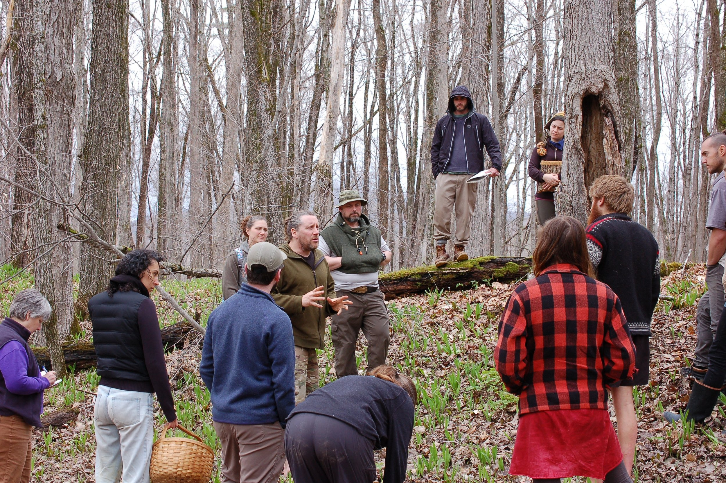 Arthur Haines teaching a spring foraging class