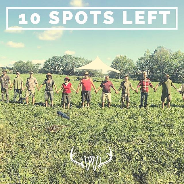 Ten spots left for the gathering this July! 🏹🌱 Come to our land here in Maine to learn primitive skills, make new friends, and eat yummy organic meals. Sign up soon before we sell out! Link in bio. 👆