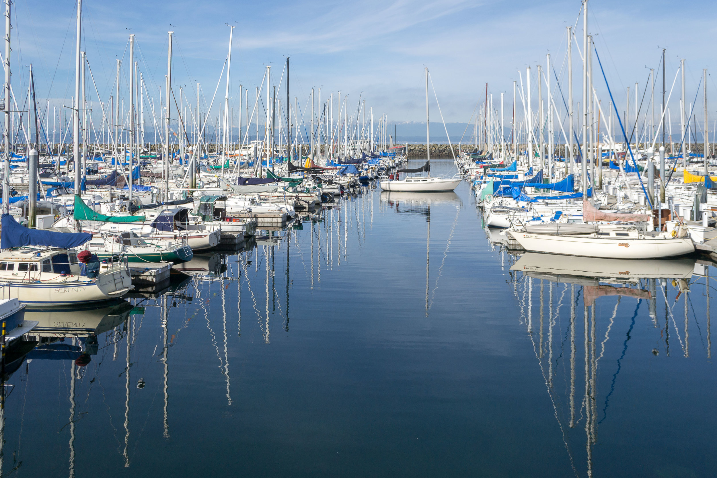 From whale watching to harbor cruises and from the Victoria Clipper to gala celebration cruises, the Puget Sound area has hundreds of private recreational vessels using the waterways.