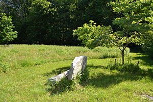 Carter Stone Bench