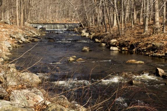 sara_taylorwoods_river.jpg