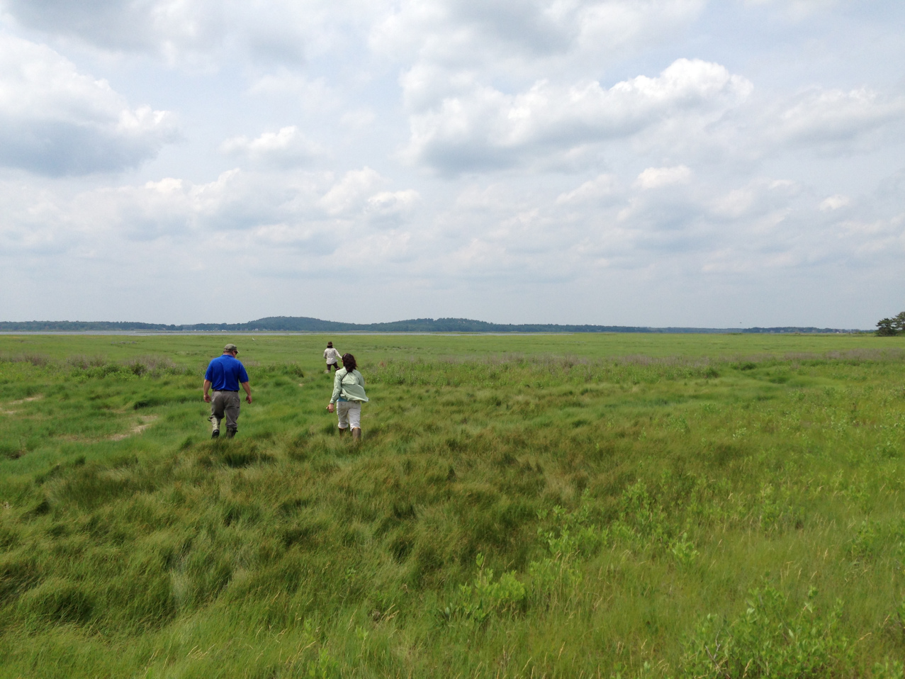 caption-service-staff-visit-the-great-marsh-at-parker-river-refuge-to-preview-upcoming-salt-marsh-resilience-projects-awarded-through-department-of-the-interior-credit-margie-brennerusf.jpg