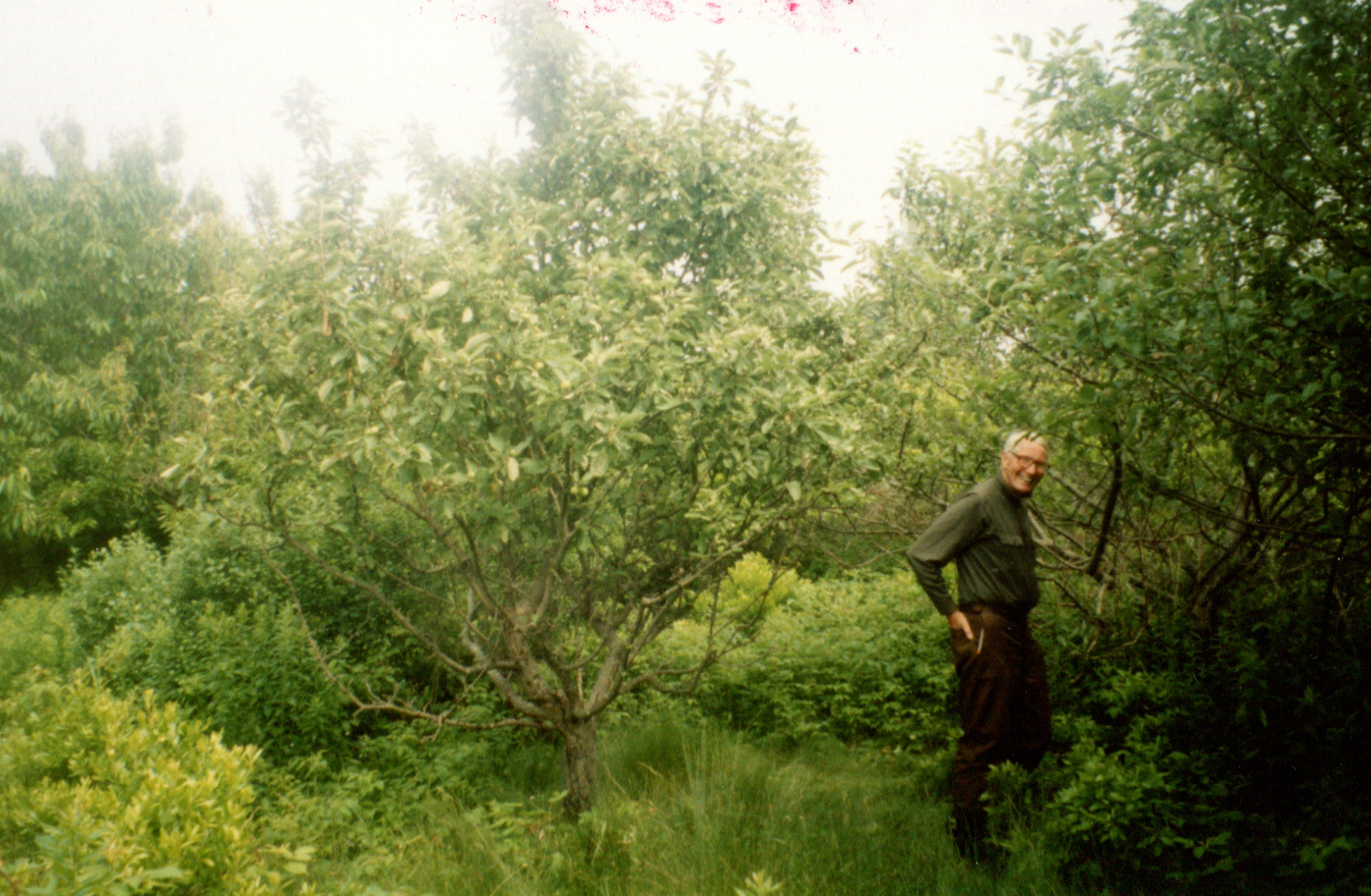 Bob Belknap walking the 38-acre property in Weston off of Georgetown Road