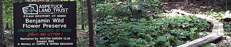 Bejamin Wildflower Preserve Sign.jpg