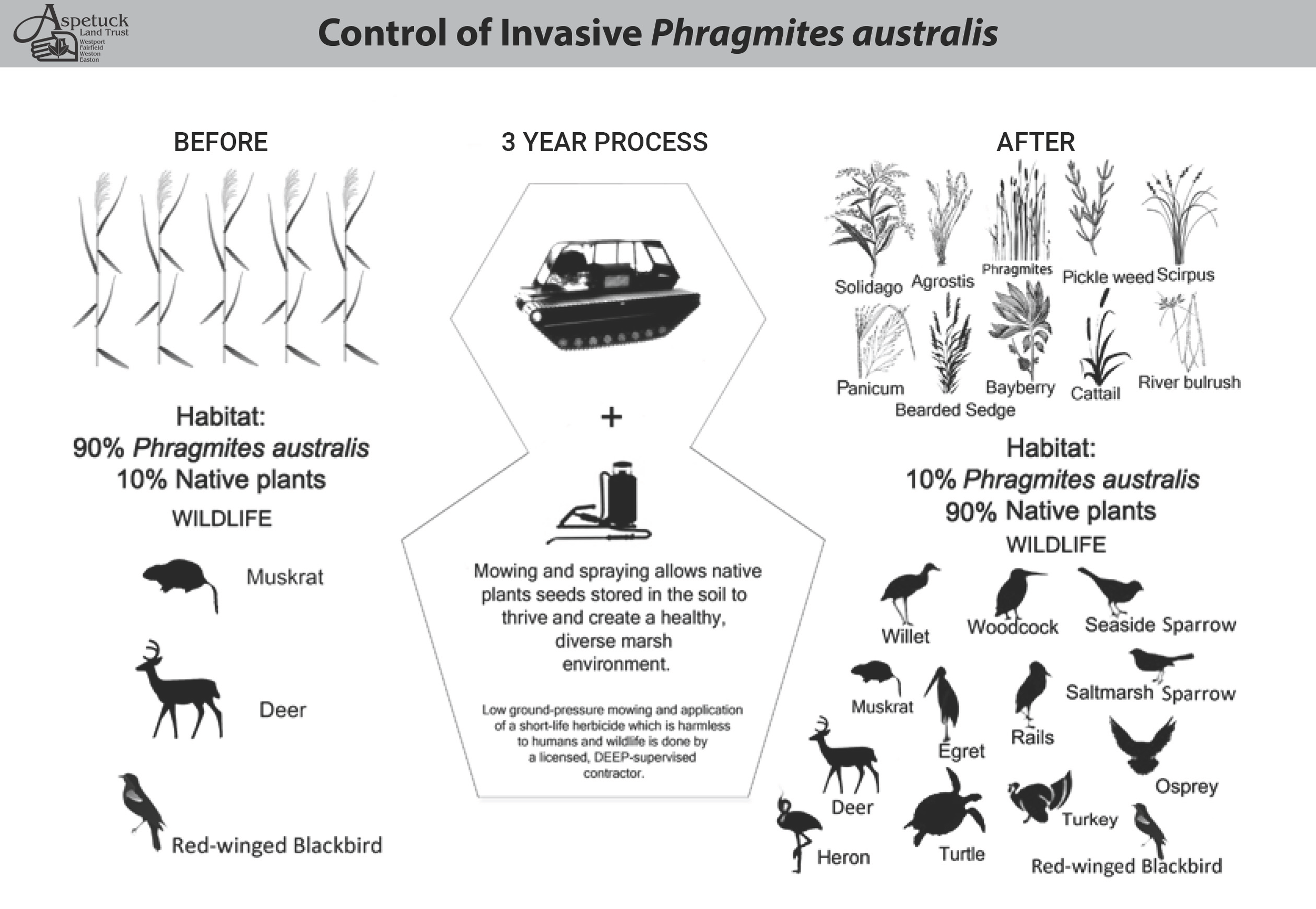 Control of Invasive-infographic-2 -10-2018.png