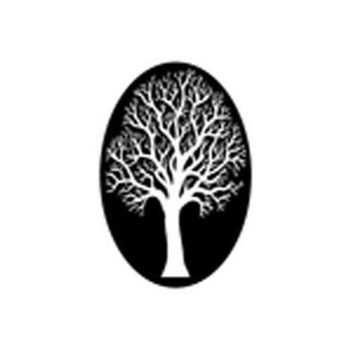 Wakeman's white birch nursery - 6923 Main StreetTrumbull, CT 06611(203)-261-3926
