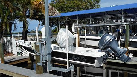 Dolphin EL 1.5KG HR 001 W.jpg