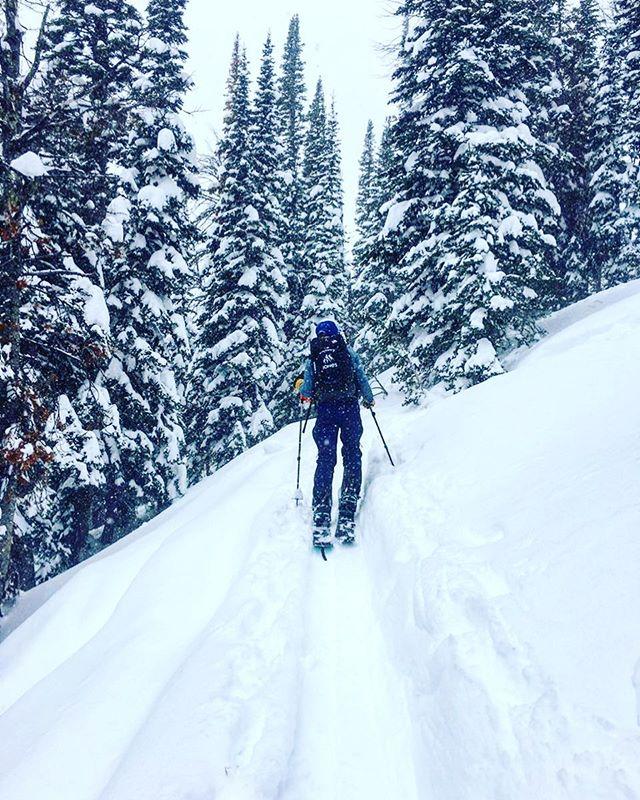 You're doing great, keep up the good work.🤘🏼 . . . . 📸: @benjamin.t.fournier  #goforit #almostthere #keepwinterwild #lettheoutsidein #splitboarding #jonessolution #skiwithfriends #loveya