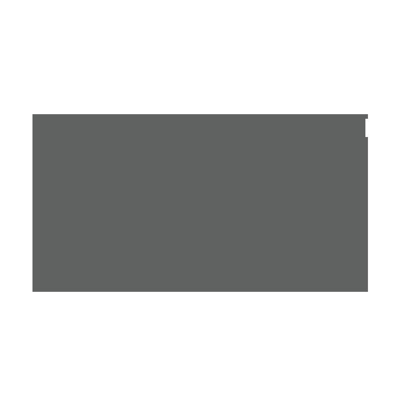dicks-logo.png