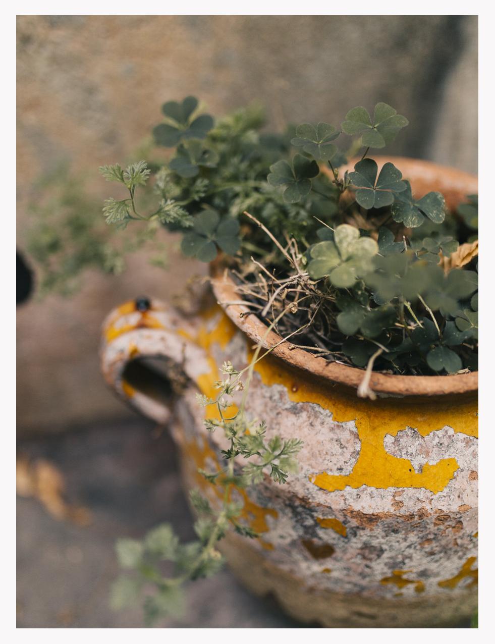 TuscanWeddingPhotographer.jpg