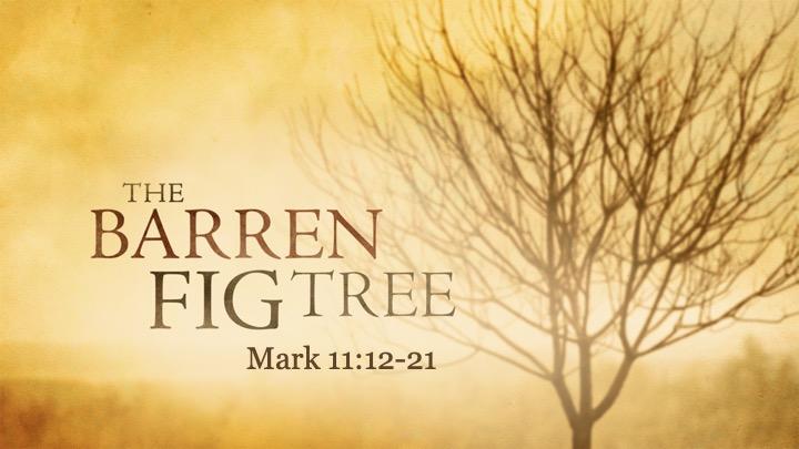 The Barren Fig Tree