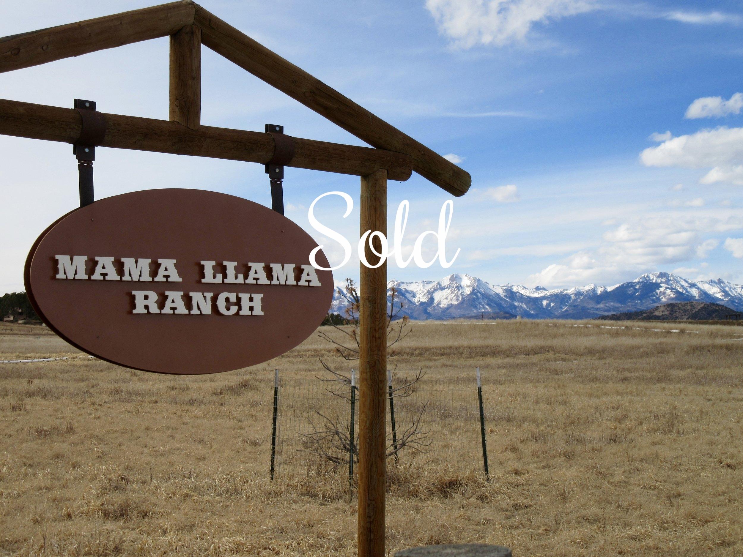 426 Mama Llama Lane