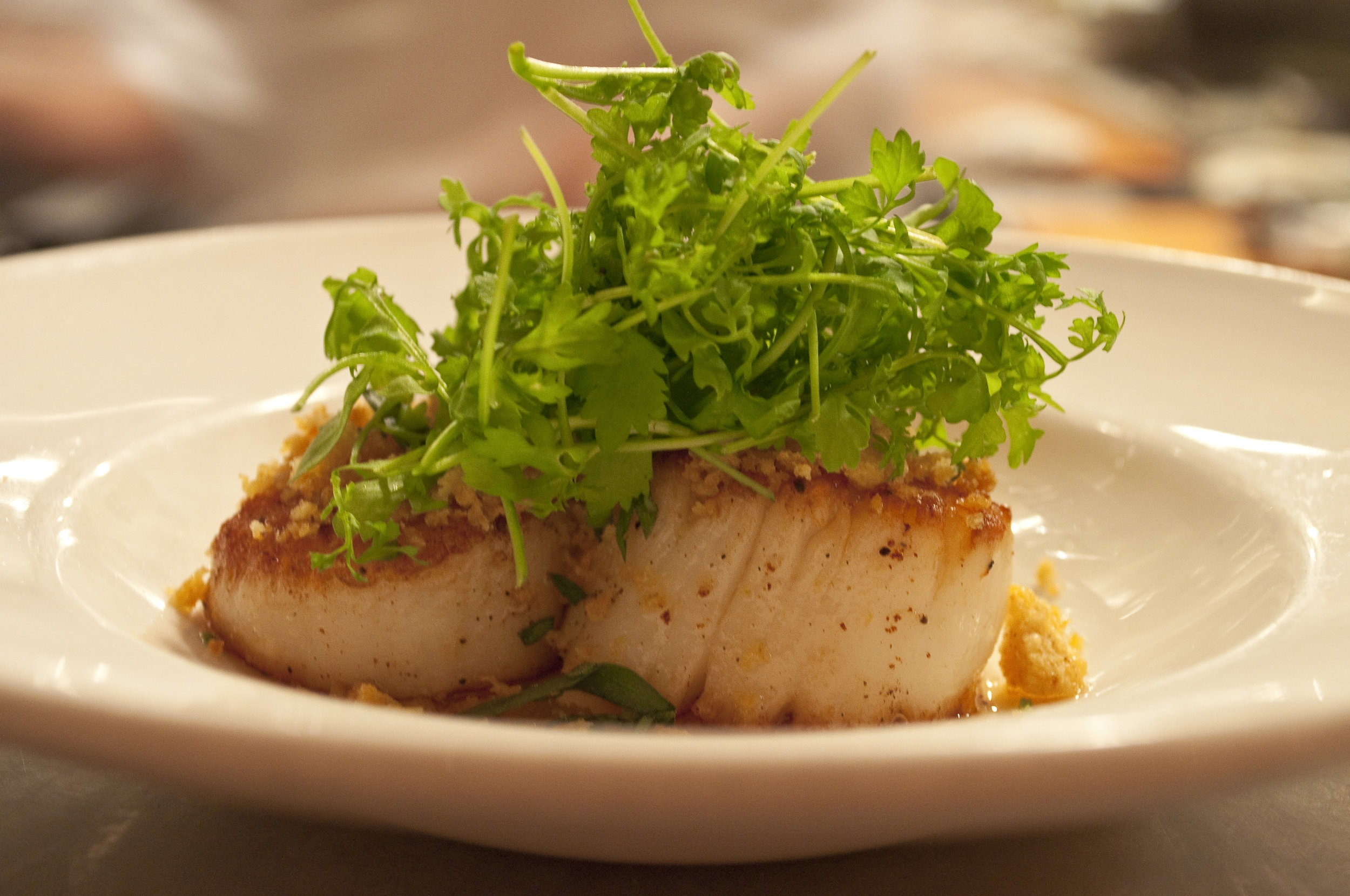 Scallops with Peppercress & Breadcrumbs.JPG