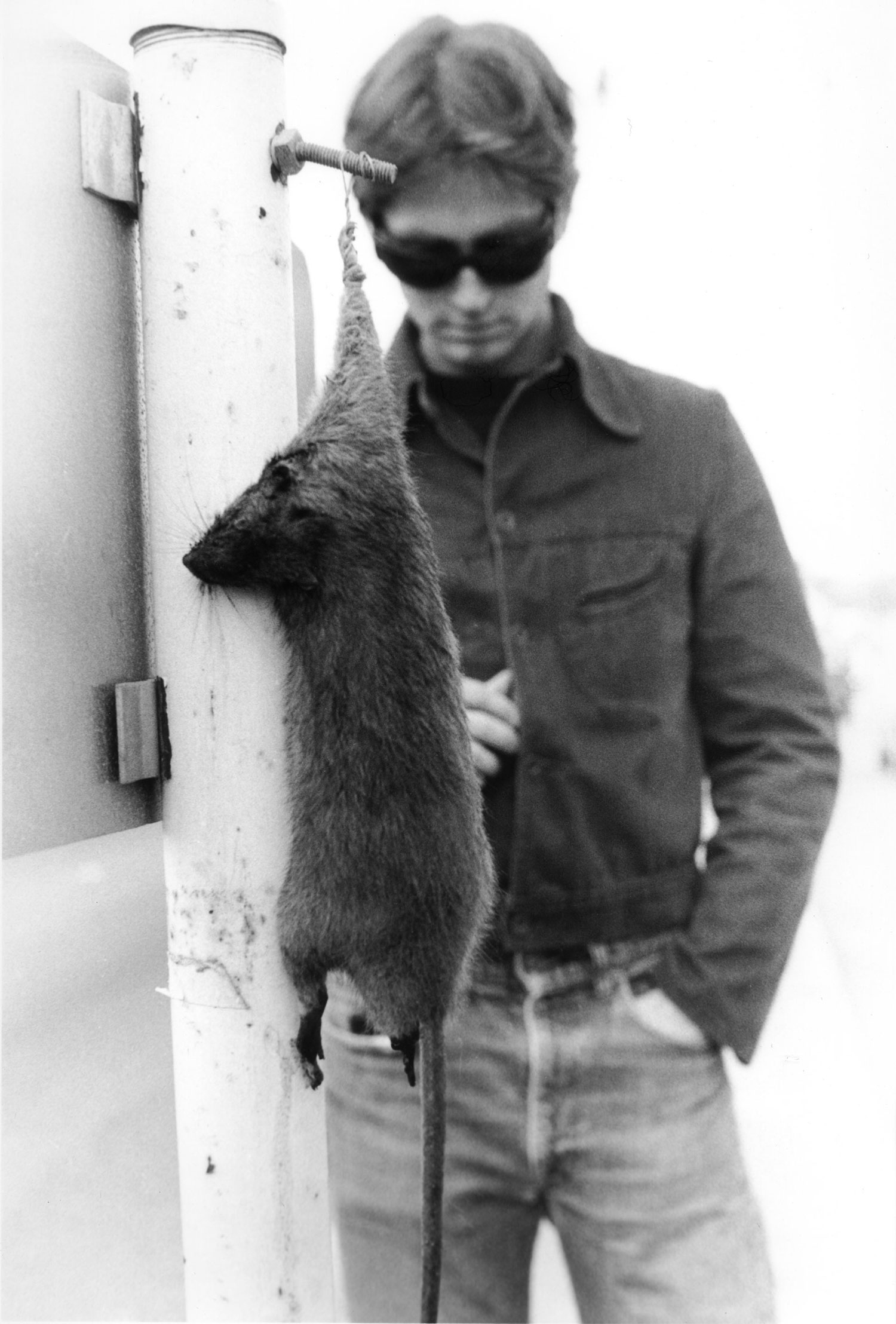 Mike Shannon, Dead Rat, Guerrero Street