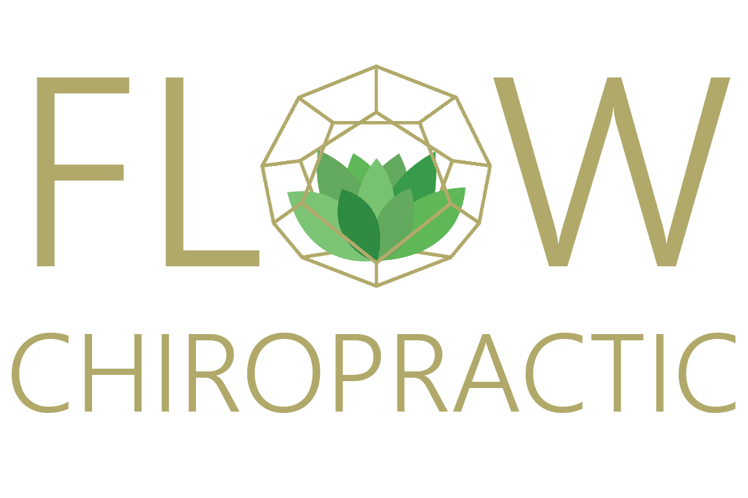 Flow Chiro Logo (photo).