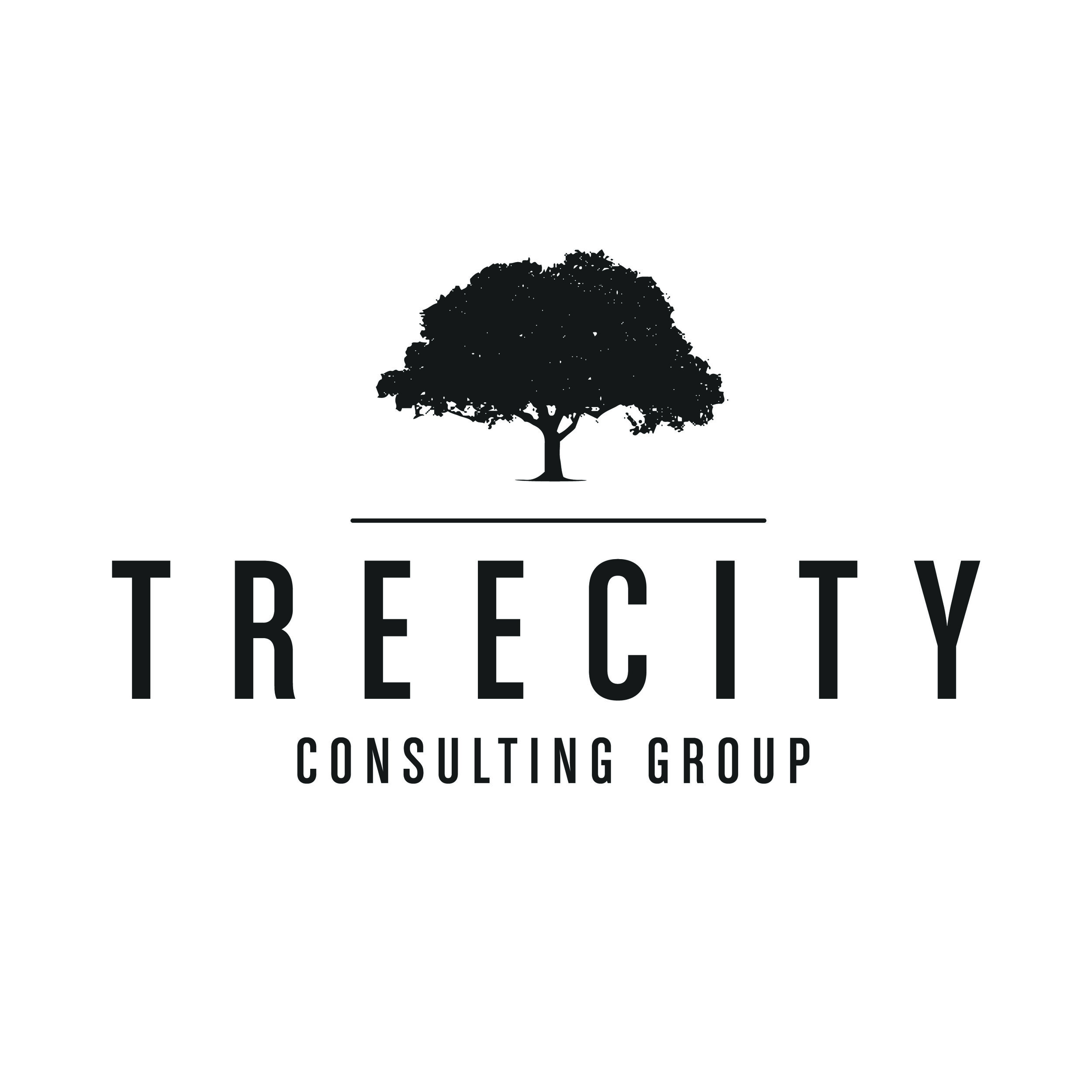 TreeCity Consulting Group - This project was for a serious, corporate group which required a logo whose look reflected that. It was important to hit a tone that could convey authority and feel well-established, while still maintaining a welcoming appeal.
