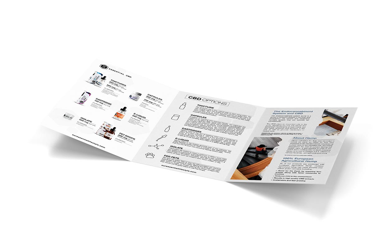 Informational tri-fold brochure design for business.
