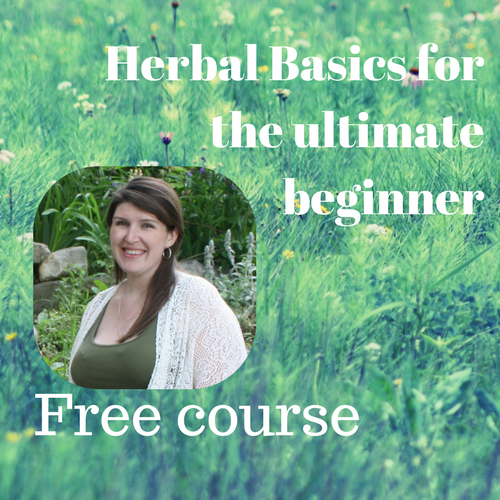 Herbal Basics for the ultimate beginner (2).png