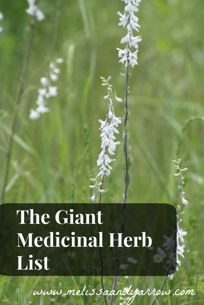 The-giant-medicinal-herb-list-683x1024.jpg
