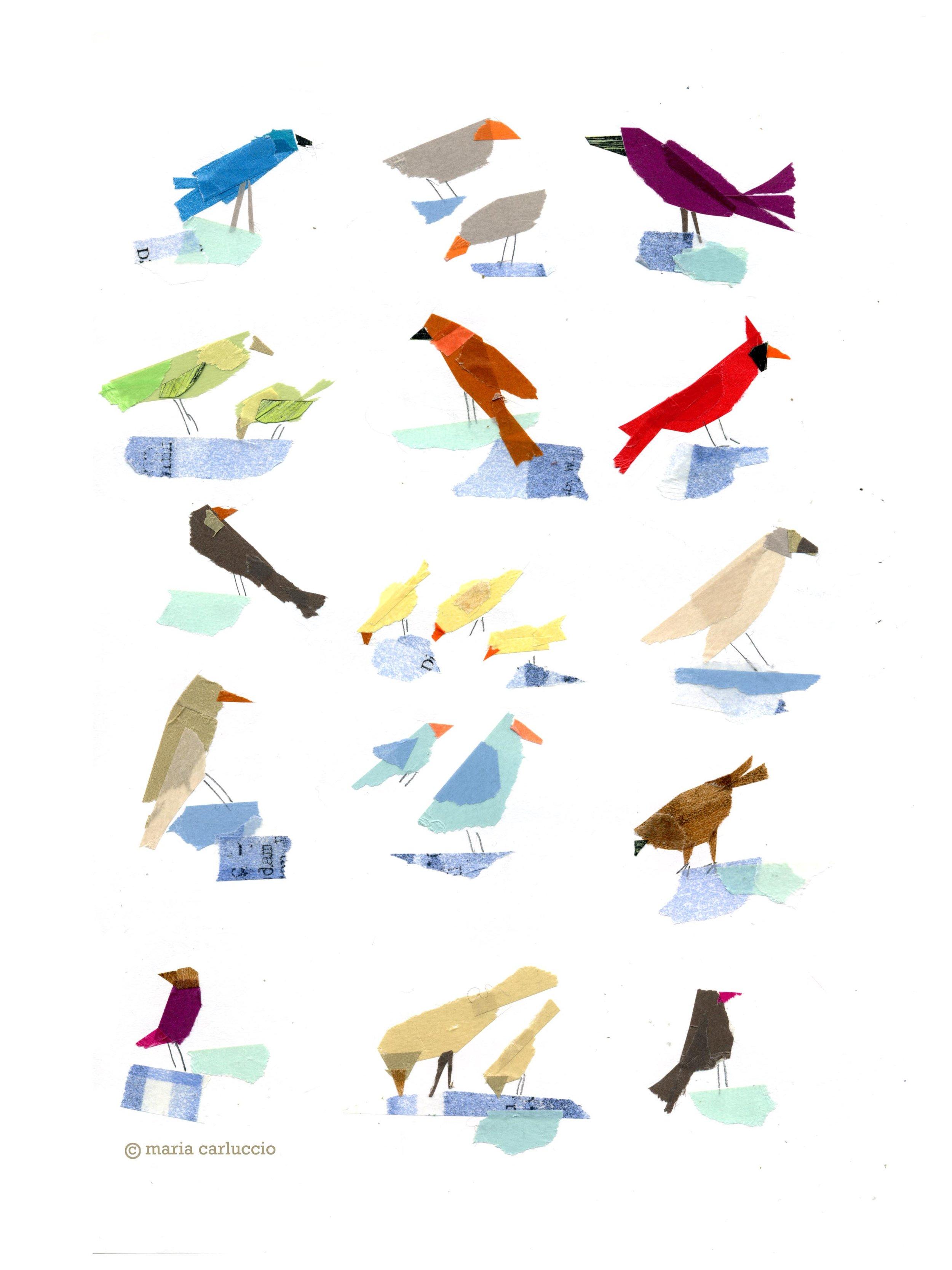 71. bird studies 2.jpg