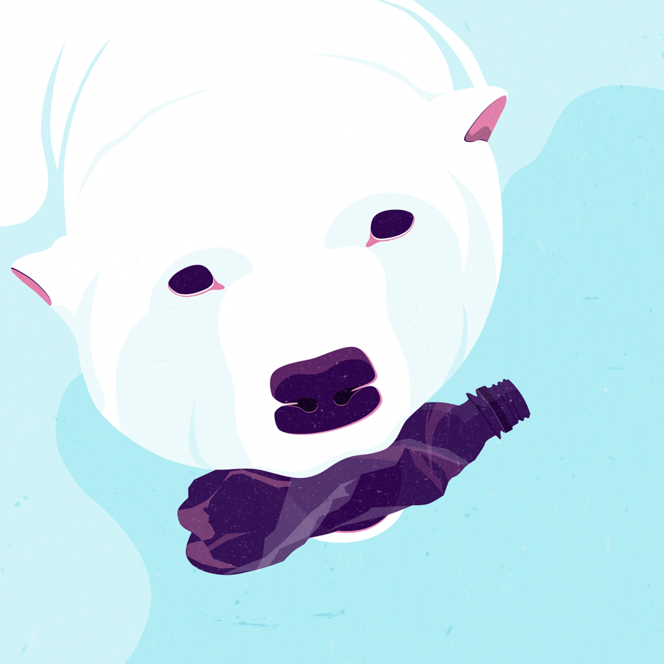 Polar Bear web.png