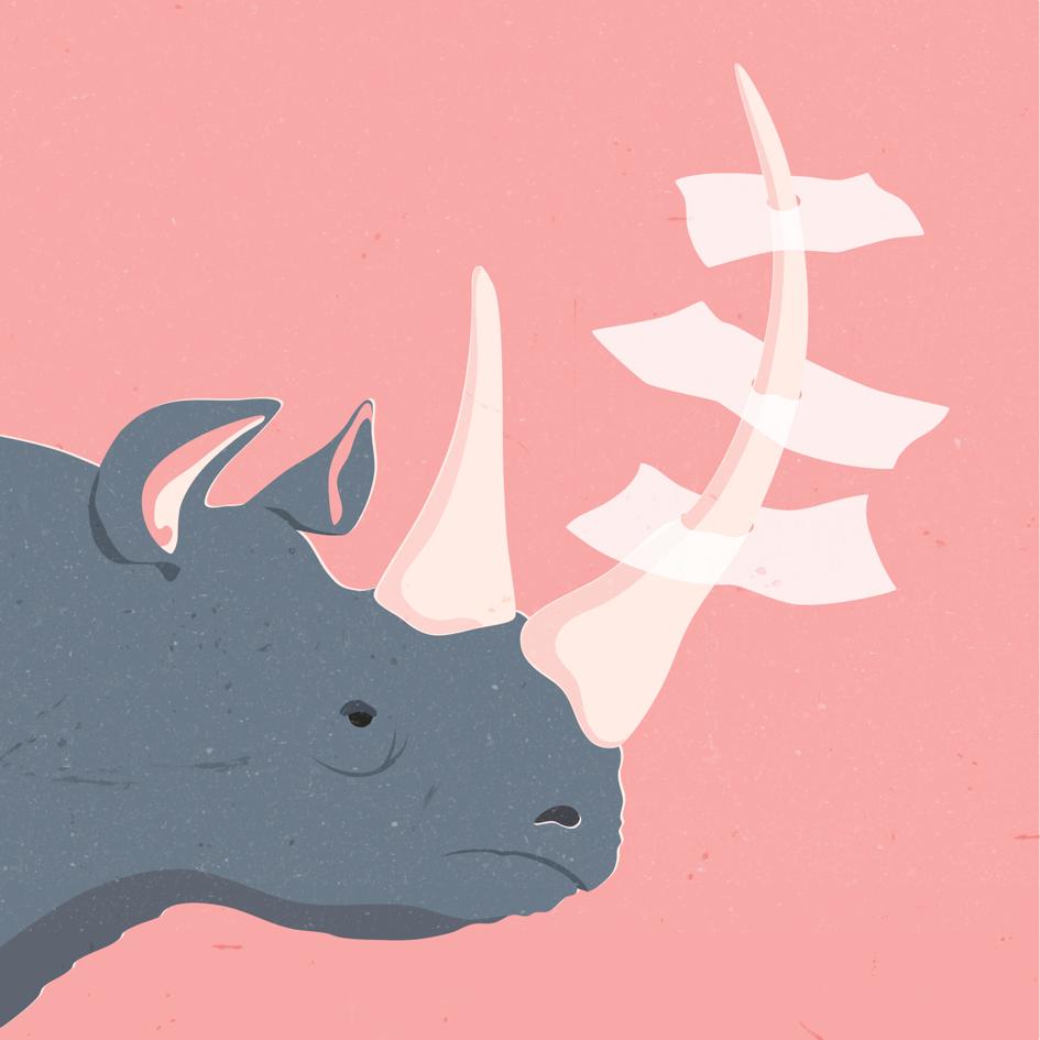 Rhino web.png