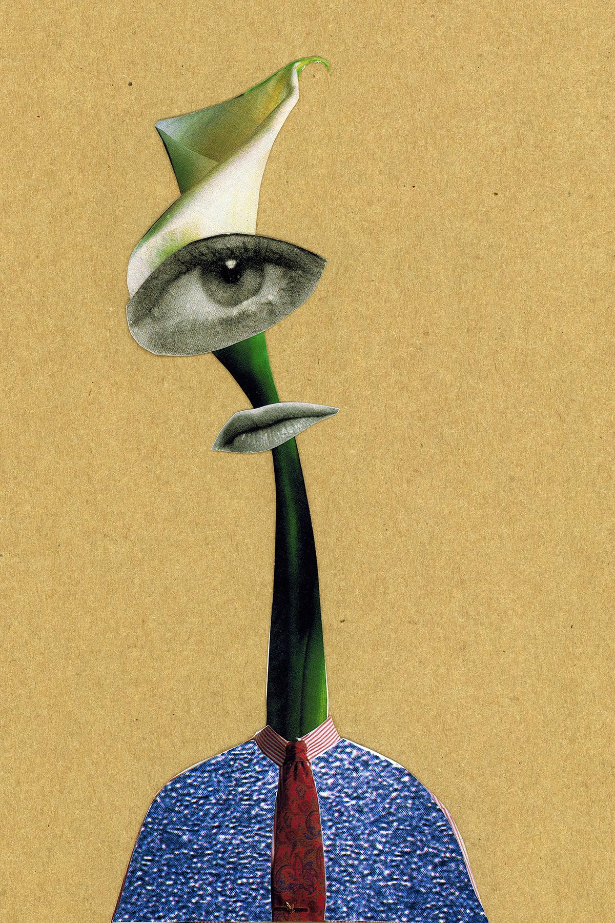 A Watcher.JPG