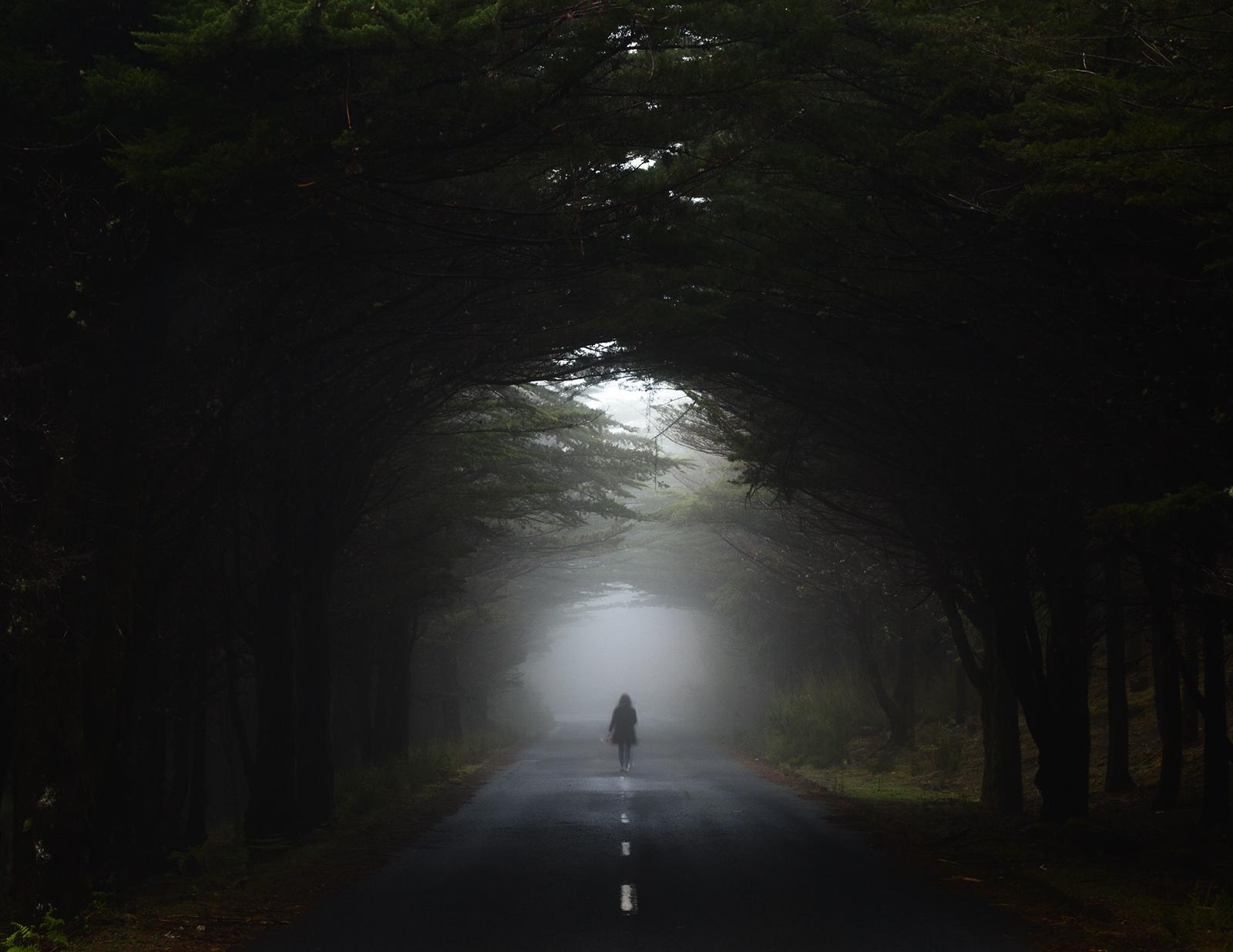 fog_nunoserrao.jpg