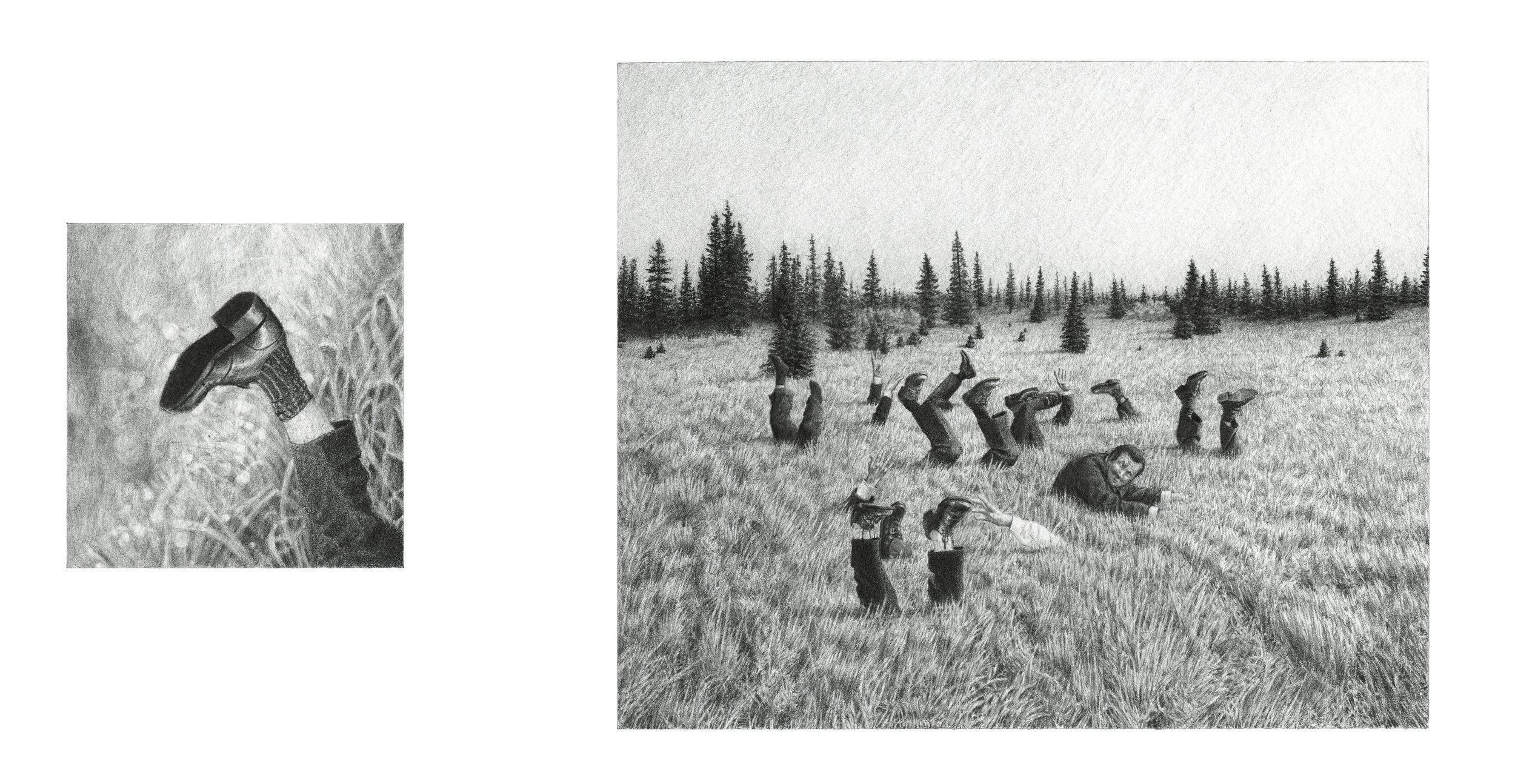 Grasslands-2-S.jpg