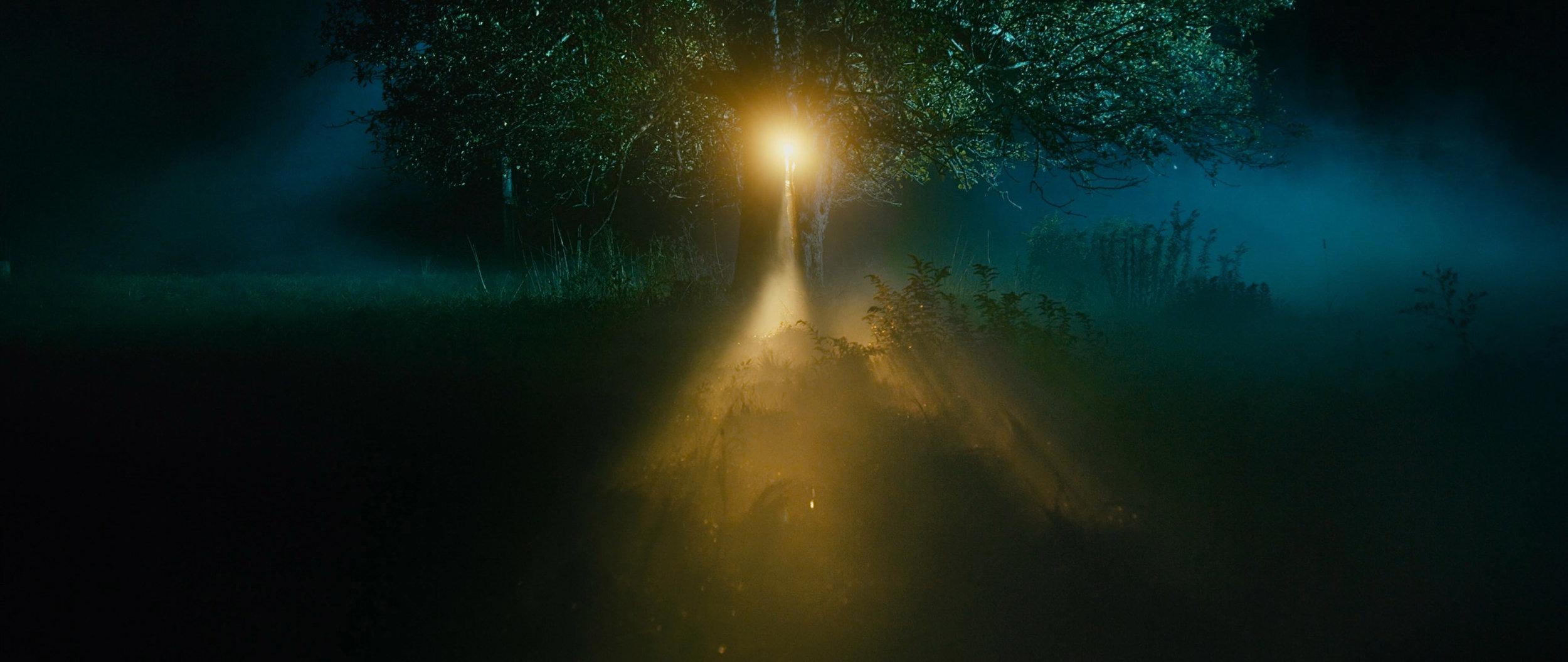 10_Tim_Sessler_THE LIGHT_4K_2.jpg
