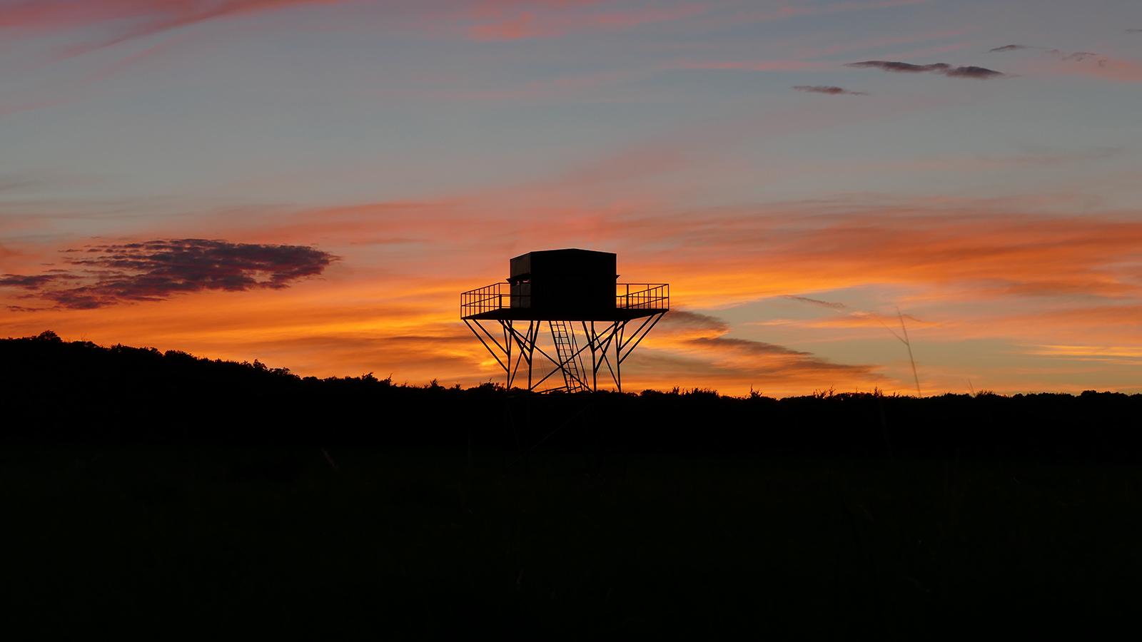 Sunset_Tower_Blind-1.jpg
