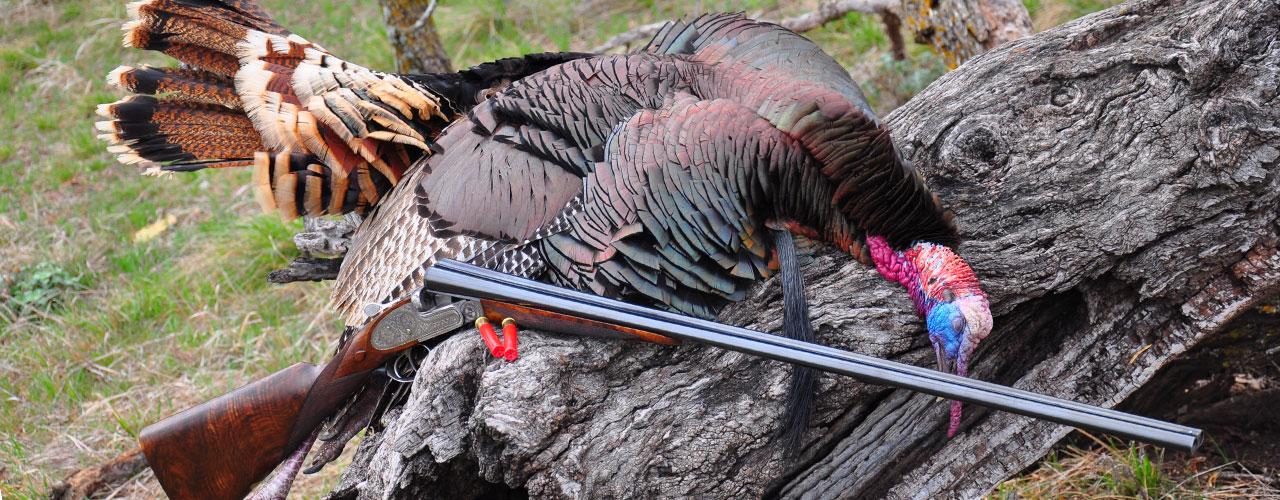 Turkey2_1280x500.jpg