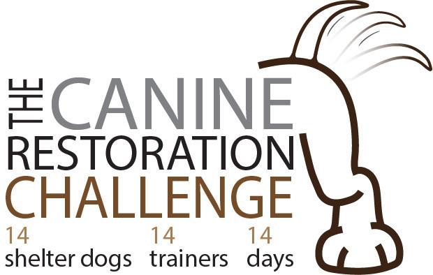 Canine Restoration Challenge, Glenn Massie