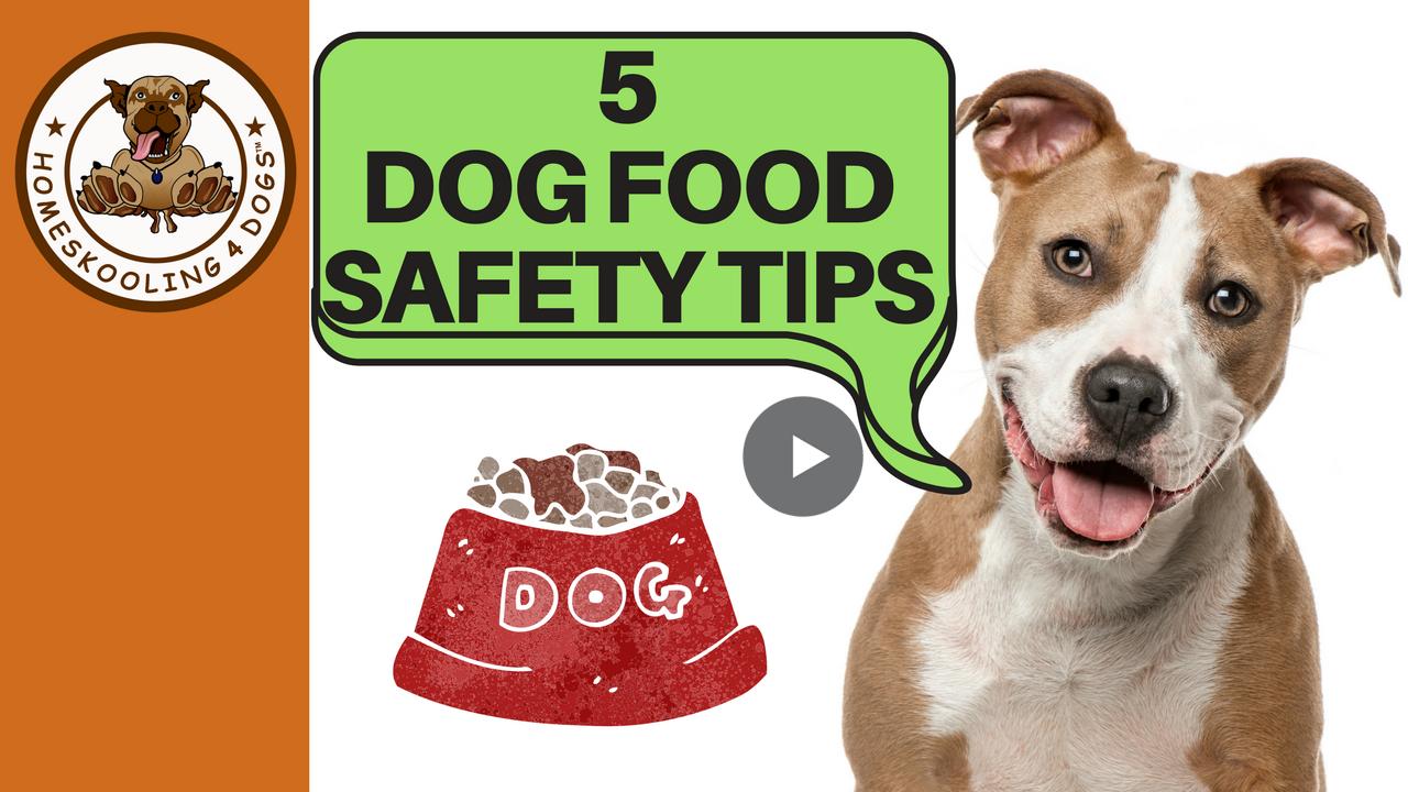 Dog food safety & storage