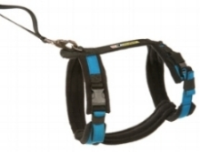 Urban Trail adjustable harness Alpine.jpg