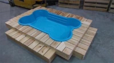 dog pool deck.jpg