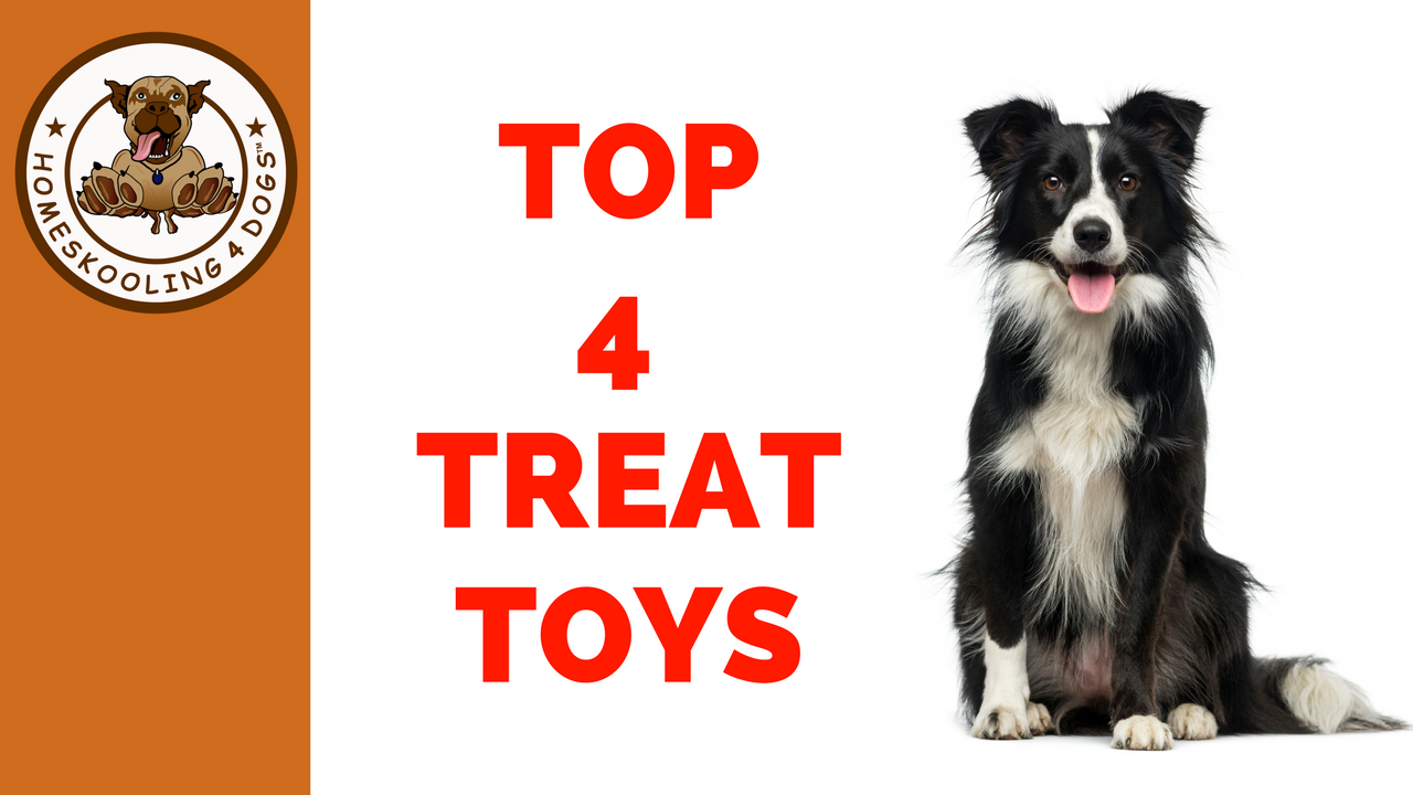 TOP 4 TREAT TOYS.png