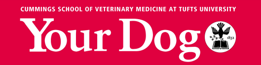 Your Dog logo Tufts University.png