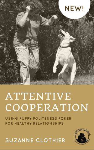 Attentive-Cooperation-Book.jpg