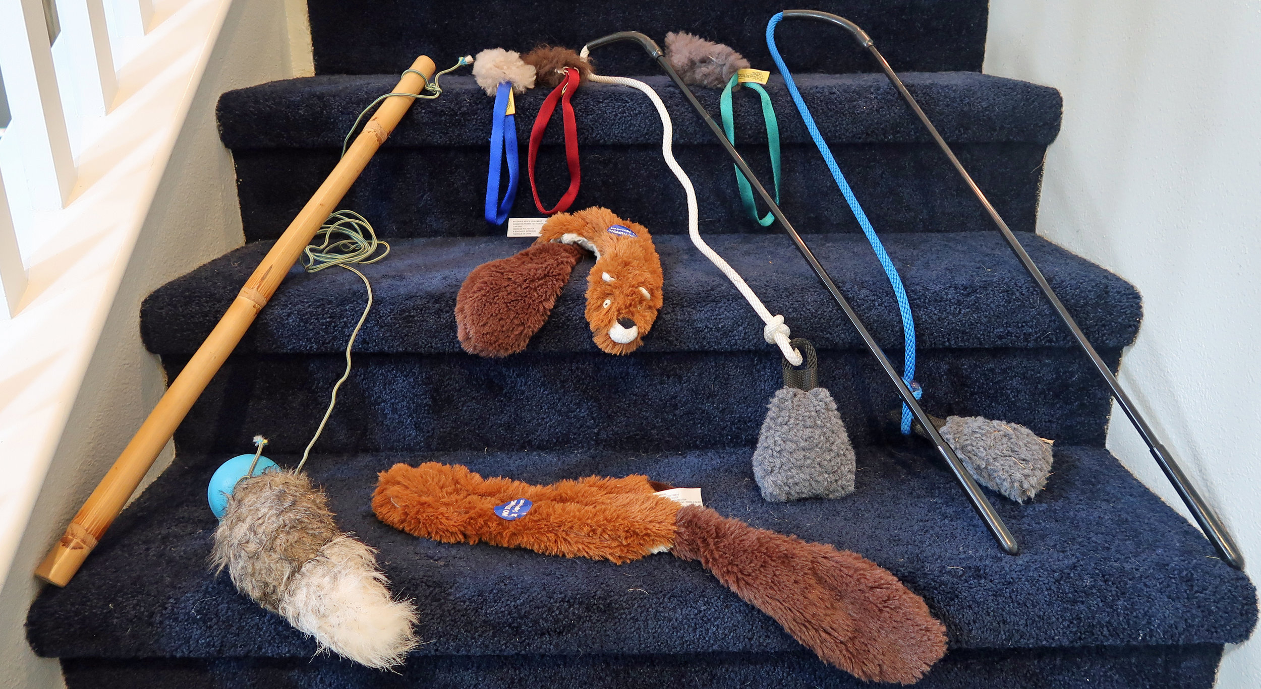HOUND BREED TOYS