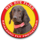 4341.tired-of-flies-around-your-kennel.png-970x0.png