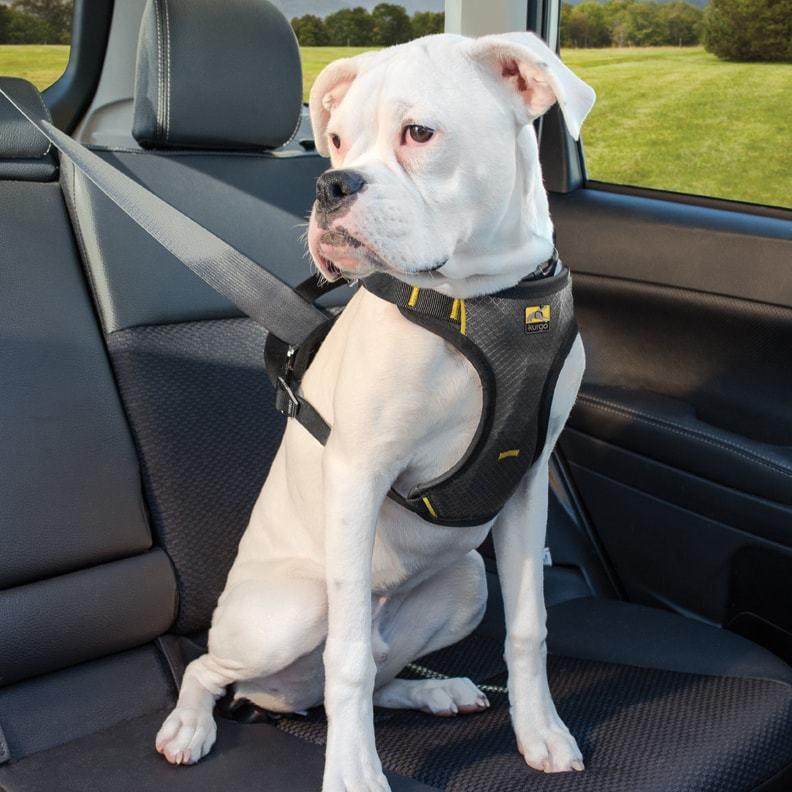 IMPACT DOG CAR HARNESS