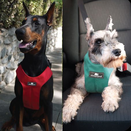 CLICKIT SPORT DOG SAFETY HARNESS