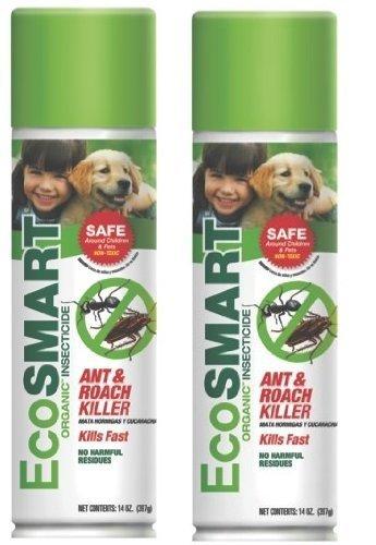 eco smart spray.jpg